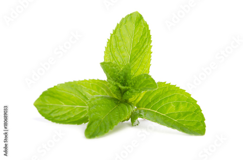 green mint  isolated on white background - 180689033