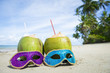 Quadro Colorful sequined carnival masks and fresh green coconut drinks on a palm fringed beach in Brazil.