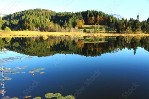 In de dag Bergen Wald spiegelt sich im Bergsee