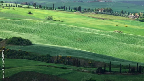 Keuken foto achterwand Olijf Shadows of clouds slide on the hills of Tuscany, Italy, timelapse 4k