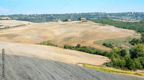 Foto op Aluminium Beige Landscape of Tuscany, Italy