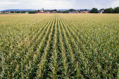 Sticker Luftaufnahme von Feldern im August