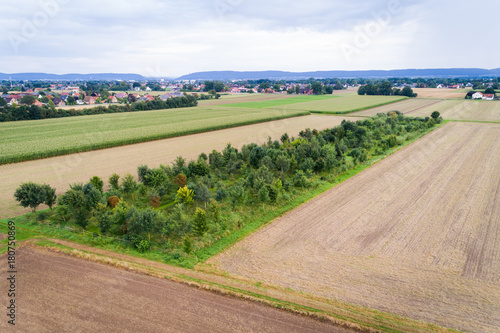 Papiers peints Beige Luftaufnahme von Feldern im August