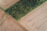 Luftaufnahme von Feldern im August