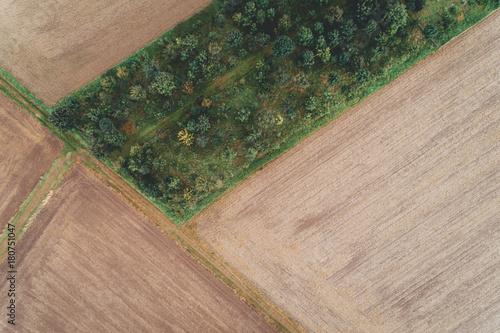 Staande foto Zalm Luftaufnahme von Feldern im August