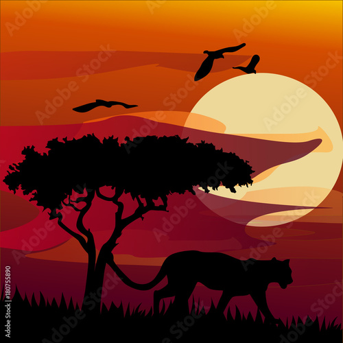 Fotobehang Zoo African landscape with tiger. Vector