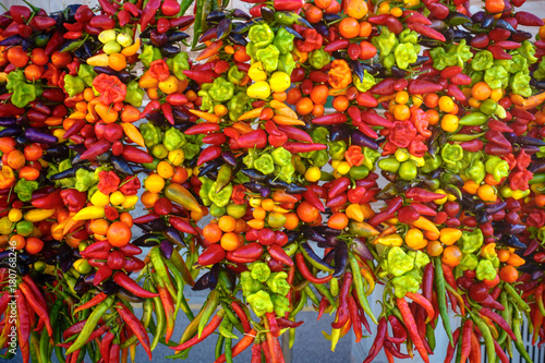 Foto op Aluminium Hot chili peppers scharfe Chili, Peperoni und Habaneros
