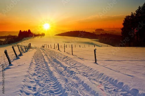 Fotobehang Meloen Winter sunset landscape with trees and field road.