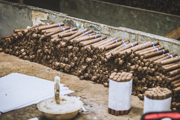 Traditional manufacture of cigars