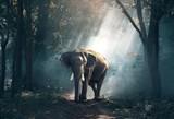 Elephant - 180780277