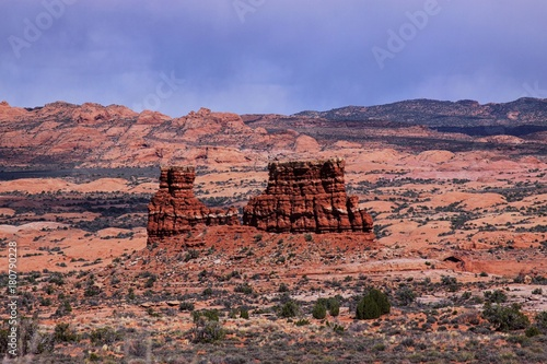 Foto op Canvas Zalm Southwest USA road trip