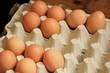 Eggs in a carton box