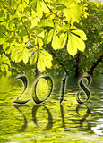 2018, Green leaves and water reflections greeting card - 180841417