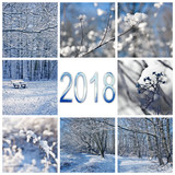 2018, snow and winter landscapes square greeting card - 180842473