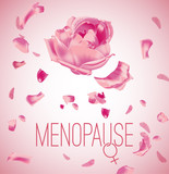 Vector Menopause Image