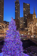 Christmass Tree in Chicago