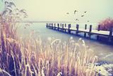 einsamer Steg am See im Winter - 180866423