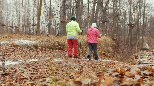 Two happy elderly women in autumn park have training - nordic walking among yellow leaves