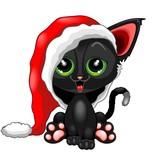 Cute Chrsitmas Kitty with Big Santa Claus Beanie