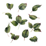 Leaves, watercolor, can be used as greeting card, invitation card for wedding, birthday and other holiday and  summer background - 180876045