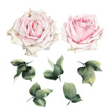 Roses and leaves, watercolor, can be used as greeting card, invitation card for wedding, birthday and other holiday and  summer background - 180877648
