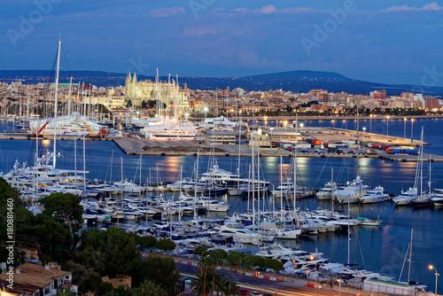Foto op Plexiglas Cathedral Cove Palma De Mallorca am Abend