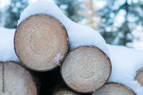 Deurstickers Brandhout textuur Holzstapel im Wald mit Schnee bedeckt - Brennholz gestapelt