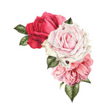 Bouquet of roses, watercolor, can be used as greeting card, invitation card for wedding, birthday and other holiday and  summer background. - 180891007