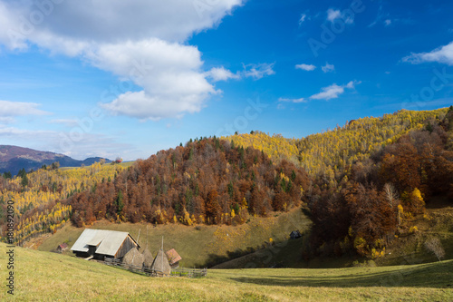 Fotobehang Diepbruine Autumn in Moeciu village, Transylvania, Romania