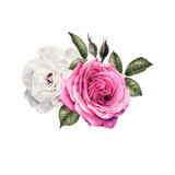 Bouquet of roses, watercolor, can be used as greeting card, invitation card for wedding, birthday and other holiday and  summer background. - 180892869