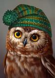 сова в шапке