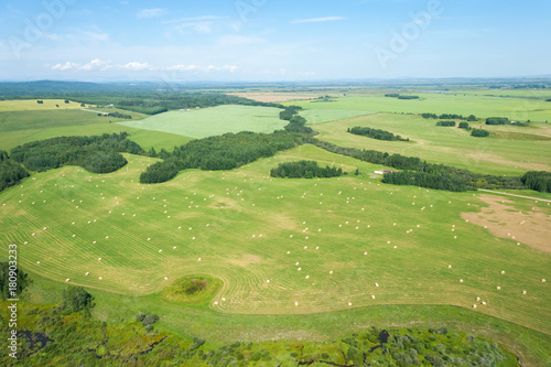 Foto op Canvas Pistache An aerial photo of green farm land with hey barrels and blue sky.