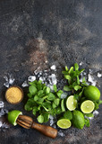 Ingredients for making summer lemonade mojito.Top view with copy space. - 180924069