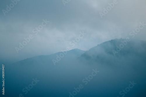 Plexiglas Groen blauw Fog in the winter