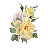 Bouquet of roses, watercolor, can be used as greeting card, invitation card for wedding, birthday and other holiday and  summer background. - 180967675