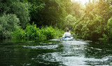 People canoeing on the river surrounded by dense green forest