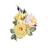 Bouquet of flowers, watercolor, can be used as greeting card, invitation card for wedding, birthday and other holiday and  summer background. - 180971635