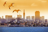 San Francisco - 180988431