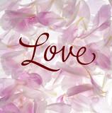pétalos con mensaje de amor  - 180988824