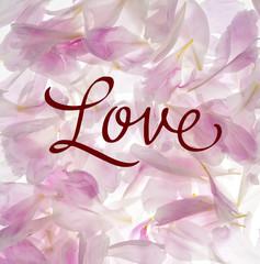 pétalos con mensaje de amor