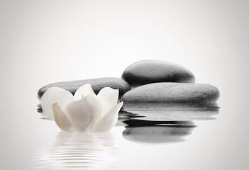 spa de piedras y flor © NGEL