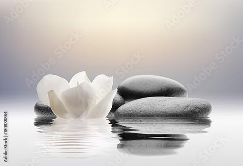 spa con flores agua y piedras - 180988864