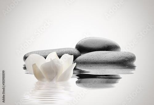 Fototapeta spa de piedras y flor