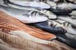 fresh fish in a fishshop