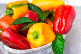 Red and Yellow Bell Peppers in grey basket. Healthy Organic Vegetables. Close up. - 180999872