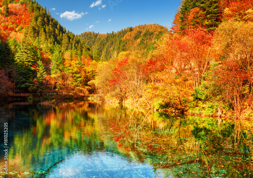 Fotobehang Landschappen Autumn woods reflected in crystal water of the Five Flower Lake