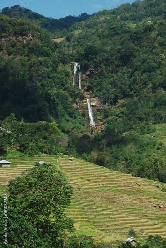 Staande foto Rijstvelden Cascades de Tengku Lese près de Ruteng, île de Florès, Indonésie