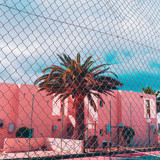 Tropical island location. Palms and pink urban. Minimal art - 181064043
