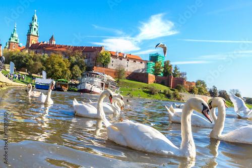 Foto op Canvas Krakau Wawel castle in Krakow