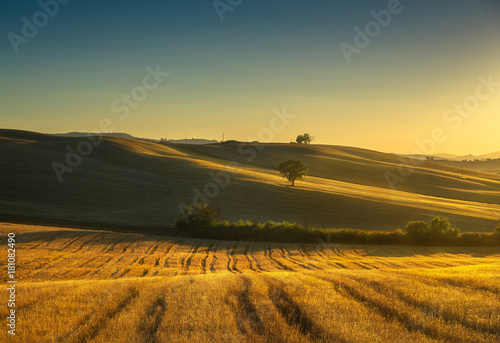 Papiers peints Toscane Tuscany countryside panorama, fields and trees on sunset. Italy